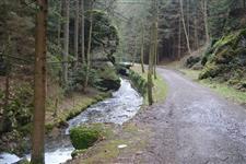 Asi do poloviny údolí vede lesácká asfaltka