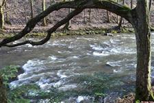 Řeka se mění co kousek