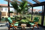 Zelená oáza vytvořená zimní zahradou AZ EKOTHERM.