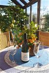 Dobré víno v kvalitní zimní zahradě