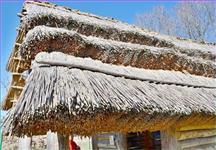 Detail rákosové střechy