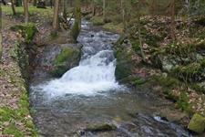 Bohdašínský potok podle kterého cesta vede