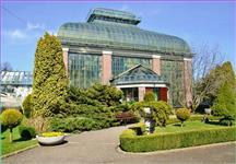 Skelník Palmiarnie - botanické zahrady