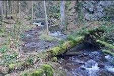 Kláda přes potok