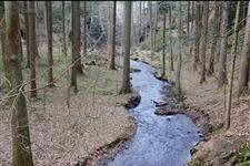 Pár desítek metrů k přehradě